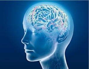 avoir une bonne mémoire cerveau